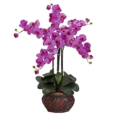 Nearly Natural 1211-OR Phalaenopsis with Vase Floral Arrangements, Orchid