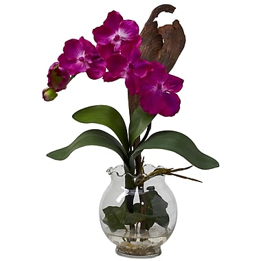Nearly Natural 1276-BU Mini Vanda Floral Arrangements, Beauty pink
