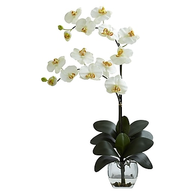 Nearly Natural 1323-CR Double Phal Arrangements, Cream