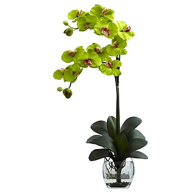 Nearly Natural 1323-GR Double Phal Arrangements, Green