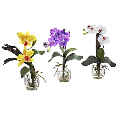 Nearly Natural 1339-A2-S3 Mixed Orchid Set of 3 Floral Arrangements, Assorted