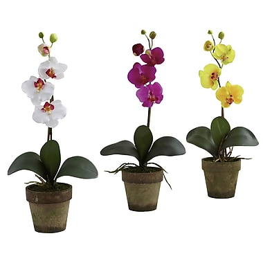 Nearly Natural 4065 Potted Phalaenopsis Set of 3, Assorted