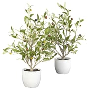 """Nearly Natural 4774 18"""" Set of 2 Olive Silk Tree in Pot"""