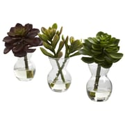 Nearly Natural 4954 Succulent Set of 3 Desk Top Plant in Decorative Vase