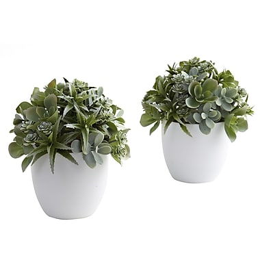 Nearly Natural 4962 Mixed Succulent in White Set of 2 Plant in Pot