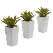 Nearly Natural 4972 Mini Agave Set of 3 Plant in Planter