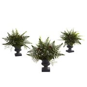 Nearly Natural 4976 Mixed Fern Bush Set of 3 Desk Top Plant in Decorative Vase