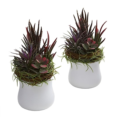 Nearly Natural 4982 Mixed Succulent Set of 2 Plant in Pot