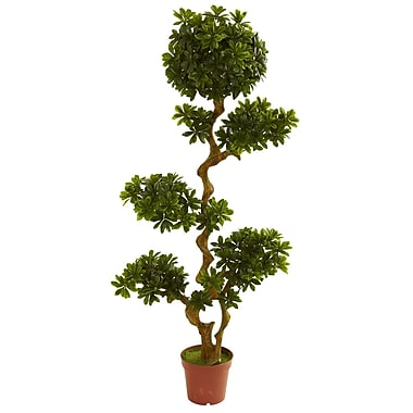 Nearly Natural 5393 5' Pittispourm UV Resistant Plant in Pot