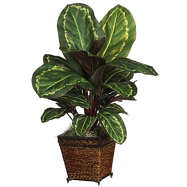 Nearly Natural 6590 Maranta Silk Plant in Pot