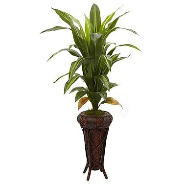 Nearly Natural 6671 Dracaena Floor Plant in Decorative Vase
