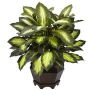 Nearly Natural 6720 Triple Dieffenbachia Desk Top Plant in Decorative Vase