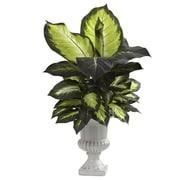 Nearly Natural 6776 Dieffenbachia Desk Top Plant in Decorative Vase