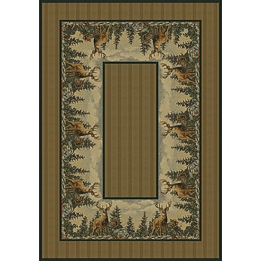 Hautman Brothers Rugs Hautman Standing Proud Brown Area Rug; Runner 1'11'' x 7'4''