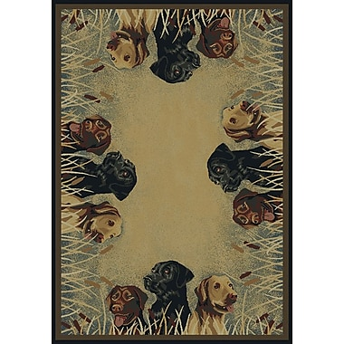Hautman Brothers Rugs Hautman Labs in Marsh Beige/Black Area Rug; Runner 1'11'' x 7'4''