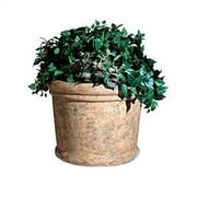 Rubbermaid Commercial Products Milan Round Pot Planter; Fresco Sahara