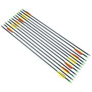 "Arrow Precision 28"" Fiberglass Target Arrows, Set of 12"