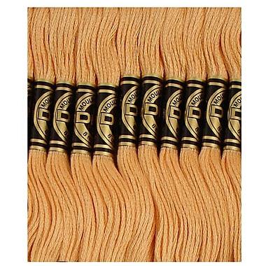 DMC Six Strand Embroidery Cotton, Ultra Very Light Mahogany