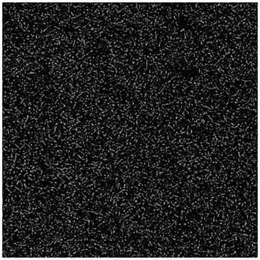 Andersen Brush Hog Nylon Entrance Mat, 4' x 6', Charcoal Brush with Cleated Backing