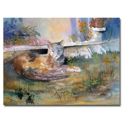Trademark Fine Art Ryan Radke 'Cat Nap' Canvas Art 30x47 Inches