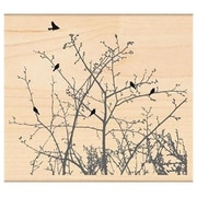 "Penny Black® 4"" x 4 1/2"" Mounted Rubber Stamp , Winter Sky"