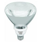 Earthbulb® 23 W 2700K PAR38 Floodlight Compact Fluorescent Bulb, Green