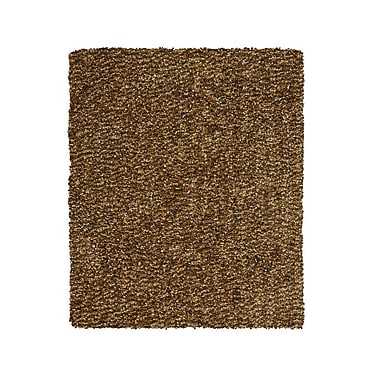 Feizy® Catarina Polyester Pile Transitional Rug, 3'6