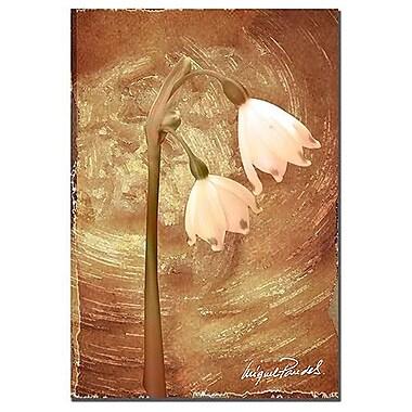 Trademark Fine Art 'Wax Flower II' 22