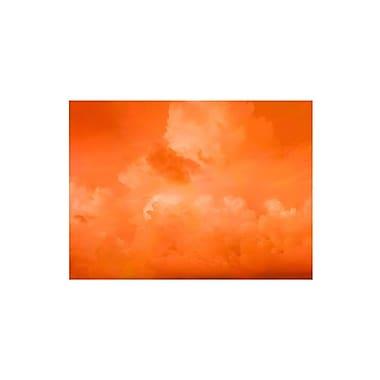 Trademark Fine Art 'Orange Clouds' 14
