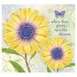LANG® Recipe Card Album, Daisy