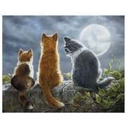LANG® Boxed Note Cards With Envelopes, Cat Whisperers