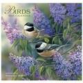 LANG® Avalanche Birds 2015 Standard Wall Calendar