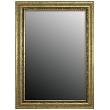Second Look Mirrors Andelusian Rose Silver Classic Wall Mirror; 43'' H x 31'' W