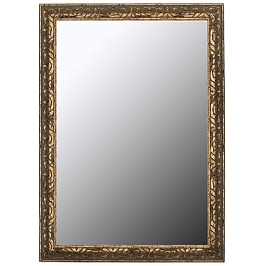 Second Look Mirrors Classic Aged Silver and Olde Copper Accents Wall Mirror; 59'' H x 23'' W