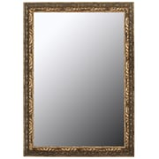 Second Look Mirrors Classic Aged Silver in Olde Copper Accents Framed Wall Mirror; 59'' H x 23'' W