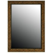 Second Look Mirrors Olde World Copper Framed Wall Mirror; 42'' H x 30'' W
