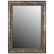 Second Look Mirrors Euro Olde World Vintage Silver Wall Mirror; 47'' H x 37'' W