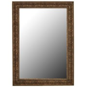 Second Look Mirrors Classic Reflections Light Bronze Gold; 67'' H x 31'' W