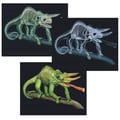 Learning Resources® Tilt & View Animal X-Ray Card