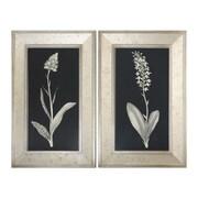 Uttermost Grace Feyock 2-Piece Antique Floral Study Framed Wall Art