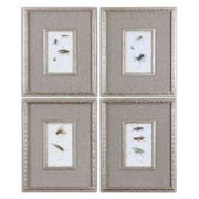 Uttermost Grace Feyock 6-Piece Insect Study Framed Wall Art