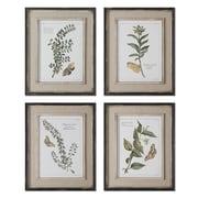 Uttermost Grace Feyock 4-Piece Butterfly Plants Framed Wall Art