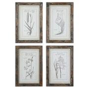 Uttermost Grace Feyock 4-Piece Grasses Framed Wall Art