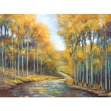 Portfolio Canvas ''Country Gold'' Painting Print on Wrapped Canvas