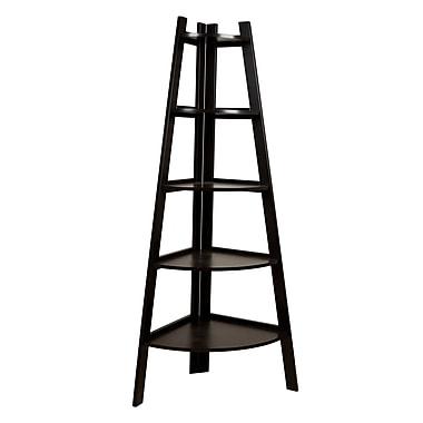 Danya B Five-Tier Corner Ladder Display Bookshelf (BQ0279)