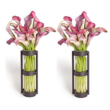 Danya B QB101-2 Metal Stand Glass Cylinder Vases Set of 2, Black