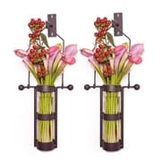 Danya B QB102-2 Wall Mount Hanging Glass Cylinder Vase Set with Metal Cradle and Hook