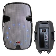 QFX® SBX-1507BTL 250 W RMS Bluetooth Speaker With Amplifier, Grey