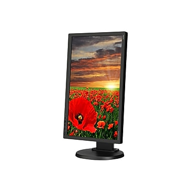 NEC MultiSync E201W-BK - LED monitor - 20in.