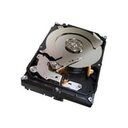 "Seagate® Barracuda SV35.5 1TB 7200 RPM 3.5"" Surveillance Internal Hard Drive"